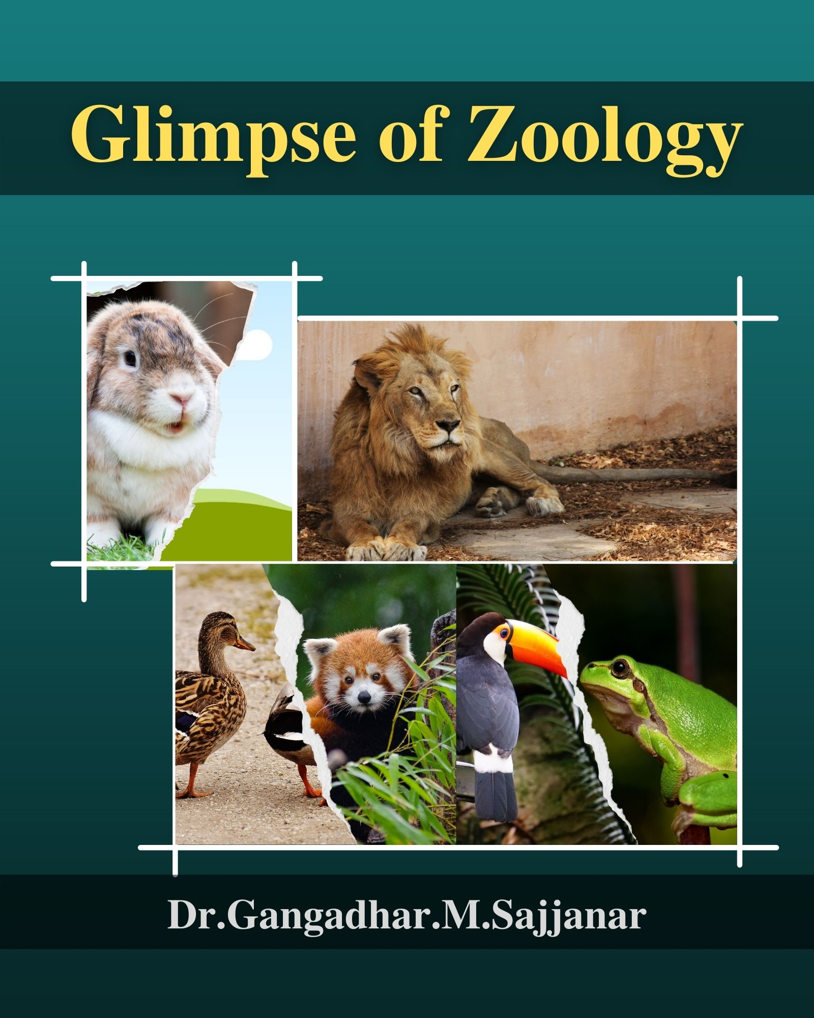 Glimpse of Zoology - Front Cover