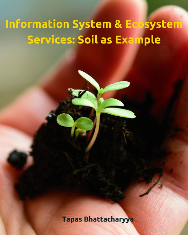 Information System & Ecosystem Services: Soil as Example
