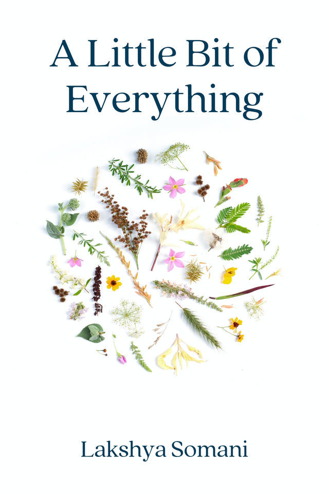 A Little Bit of Everything - Front Cover