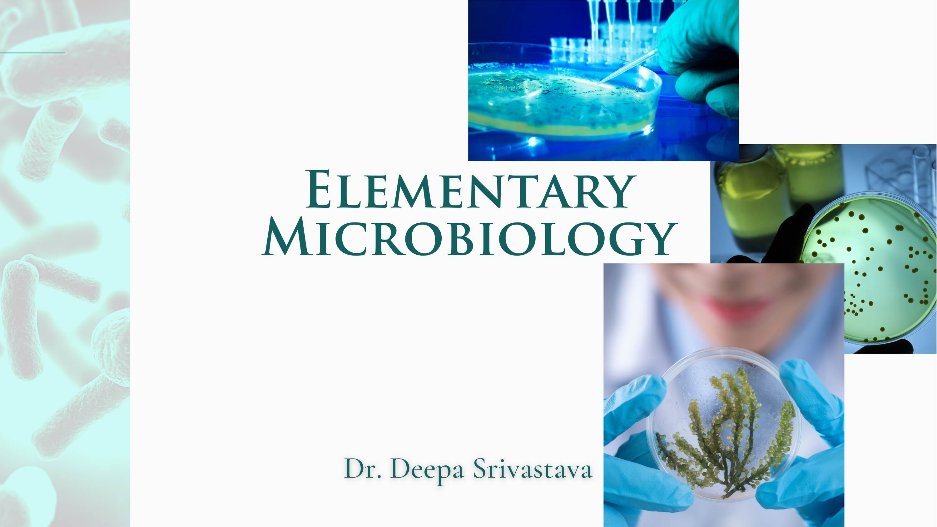 Elementary Microbiology - Front Cover